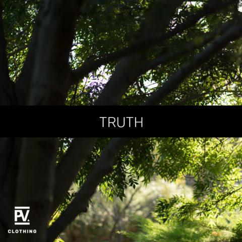 insta-1-truth